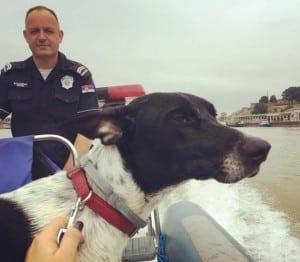 policija spasila psa petface