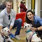 Prešli su skoro 3.500 kilometara da bi udomili slepog psa, a razlog će vas oduševiti!