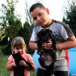 HVALA VAM: Blekica je postala Novosađanka i maše vam iz porodice Bogojević!