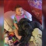 NAJBOLJI PRIJATELJ: Pas telom zaštitio bebu od vatre i spasio joj život!