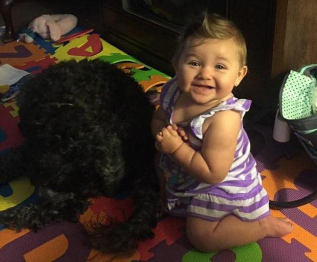 Pas zaštitio bebu petface