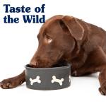 TASTE OF THE WILD odgovara – Zašto kuvana hrana nije dobra za ljubimce?