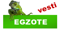 http://petface.net/kategorija/vesti/egzote/