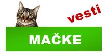 http://petface.net/kategorija/vesti/macke/