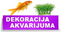 http://petface.net/kategorija/petopedija/akvaristika-petopedija/dekoracija-akvarijuma/
