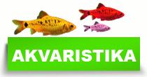 http://petface.net/kategorija/petopedija/akvaristika-petopedija/