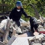 NOVI HEROJI ITALIJE: Psi Leo i Sarotti iz ruševina spasili dve devojčice!