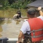 Rizikovali su svoje živote kako bi spasili pse, zaglavljene u poplavi!