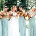 Sarino neobično venčanje: Umesto bidermajera – kuce iz Prihvatilišta!