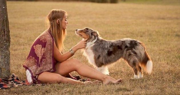 psa friskies petface