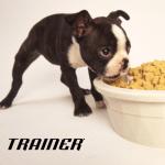 NATURAL TRAINER: Prelazak štenaca na čvrstu hranu