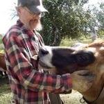 VELIKI LAJK: Farmu krava pretvorio u sklonište za životinje!