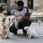 Ovaj čovek je ostao u Siriji da bi brinuo o napuštenim mačkama!