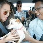 VELIKI LAJK: Ušli u UBER vozila, dobili pse i vesele repiće!