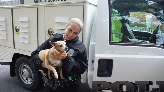 policija za životinje petface