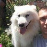 DIRLJIV SUSRET: Porodica Milošević iz Valjeva pronašla psa Akija nakon dve godine!