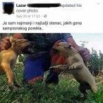KRIVIČNA PRIJAVA: Lazar G.V. osumnjičen da uzgaja pse za borbe i učestvuje u njima!