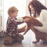 Naučite dete ovom: Životinja NIJE igračka!