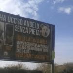 PRAVDA ZA ANĐELA: Ceo grad oblepljen plakatima UBICA psa Anđela!