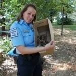 ANA JE OMILJENI KOMUNALNI POLICAJAC – spašava povređene životinje i kažnjava zlostavljače!