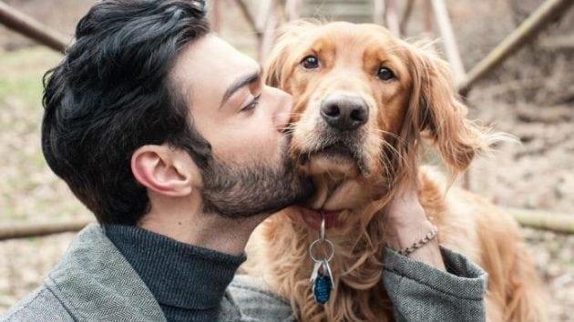 pismo psa petface