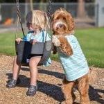 DIRLJIVO: I dečak i pas su USVOJENI, a sada pomažu i drugim udomiteljima!
