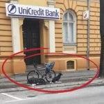 SUBOTIČKI HAČIKO: Pas 3 dana sedi ispred banke i čeka vlasnika!