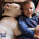 Dečak koji ne govori i gluvi bokser postaju najbolji prijatelji
