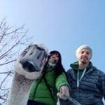 FRUŠKA GORA: Maja spasila povređenog labuda!