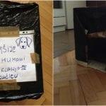 Jelena i njeni prijatelji prave i postavljaju kućice za napuštene u naselju Borča!