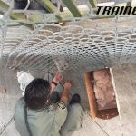 Mačka spasena ispod mosta ne može da prestane da se zahvaljuje spasiocu