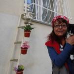 SJAJNA ŽENA: Napravila merdevine do svoje terase, kako bi ulične mace mogle ući u njen dom!