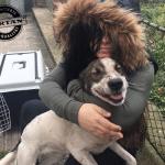 Slepi pas progledao zahvaljujući ljubavi spasiteljke