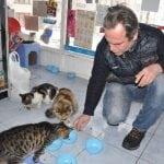 SJAJNO: Ovaj vlasnik prodavnice svakog dana otvara vrata za ulične mačke!