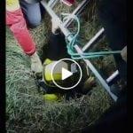 NESVAKIDAŠNJA AKCIJA U RESNIKU: Iz šahta spasili JARE! (VIDEO)