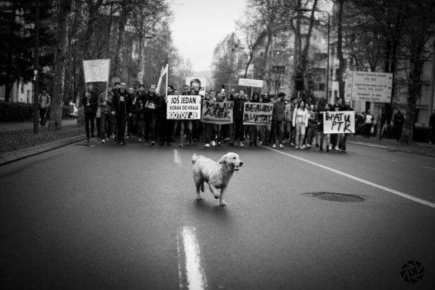 PROTESTI petface