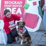 """MARATON I OVE GODINE """"PET FRIENDLY"""": Trčite sa svojim psima i donirajte za napuštene!"""