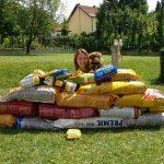 ZAJEČAR: Katarina je zamolila drugare da umesto poklona doniraju hranu za pse! I SKUPILA JE!
