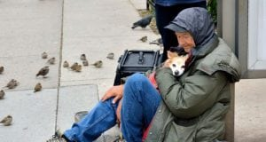 beskućnici petface