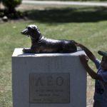 DIVNO: Ovo su spomenici u znak zahvalnosti psima, herojima!