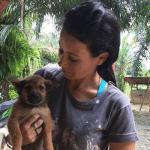 Ova žena je spasila stotine pasa od industrije psećeg mesa u Indoneziji!