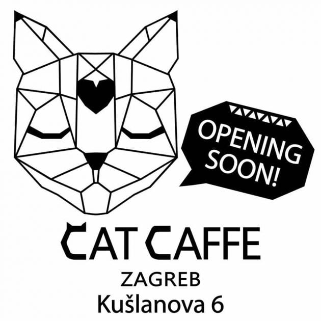 Cat café petface
