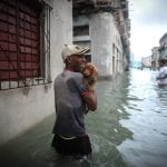KRIVIČNE PRIJAVE za sve vlasnike koji su napustili svog ljubimca usled uragana!