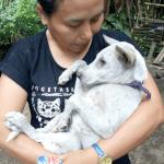 BRAVO: Volonteri spasavaju hiljade napuštenih životinja pred erupciju vulkana