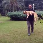 U ovoj državi AZIL ne postoji, psi se ubijaju, ali sada je ON odlučio da ih SPASI!