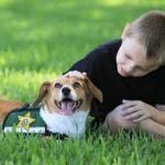 Keruša Lili bila pred eutanazijom, danas radi veoma odgovoran posao!