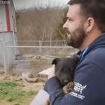 VIDEO: REAKCIJE udomljenih pasa će vam ulepšati dan!