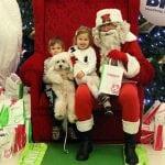 NOVI SAD u decembru dočekuje Deda Mraza za LJUBIMCE