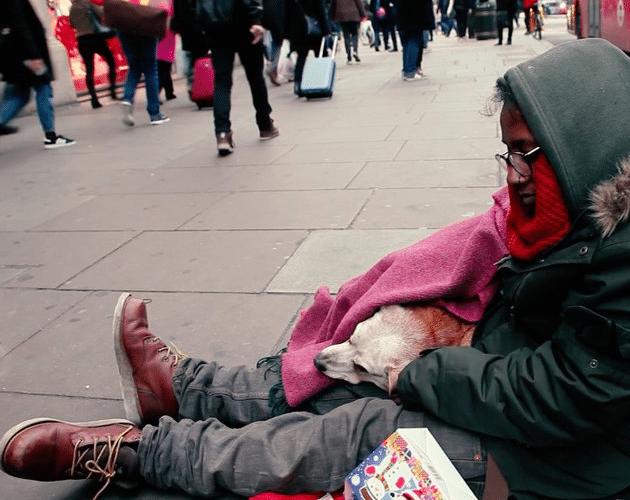 beskućnika-petface