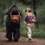 Reč psihologa: Zašto dete od 11 godina ne preza da maltretira životinju?